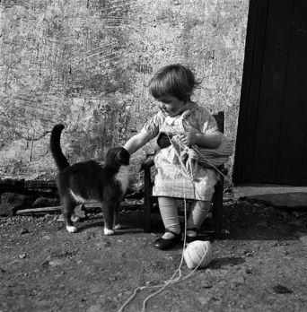 little girl knitting - Shetland